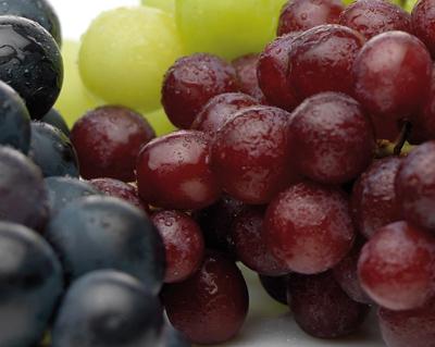 Van der Lans druivenassortiment