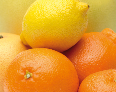 Van der Lans citrusassortiment